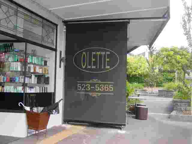 Patio Screens - Standard Patio screen with Mesh cover and signwriting for Ollette Hair Design in Remuera copy.jpg